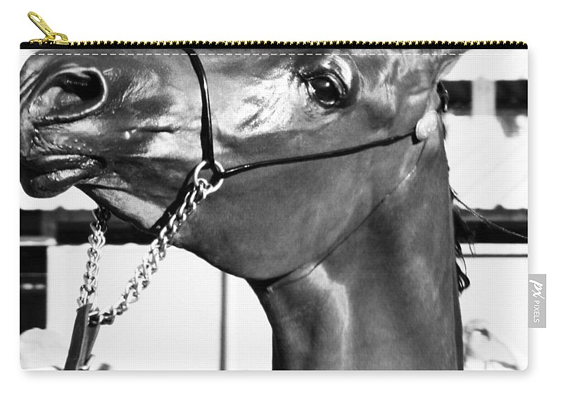 Horse Carry-all Pouch featuring the photograph Black And White Horse Head by C H Apperson