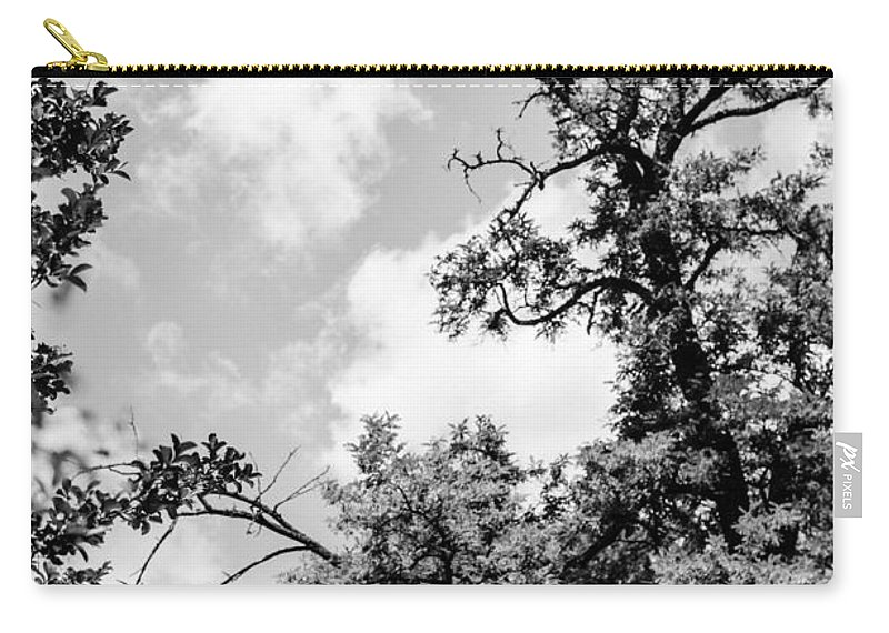 Tree Carry-all Pouch featuring the photograph Black And White Tree by Andrea Mazzocchetti