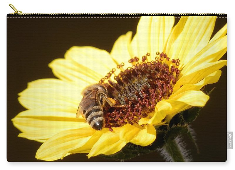 Honey Bee All Alone Collecting Nectar On A Beautiful Carry-all Pouch featuring the photograph Black And Yellow Bee Beauty by Belinda Lee