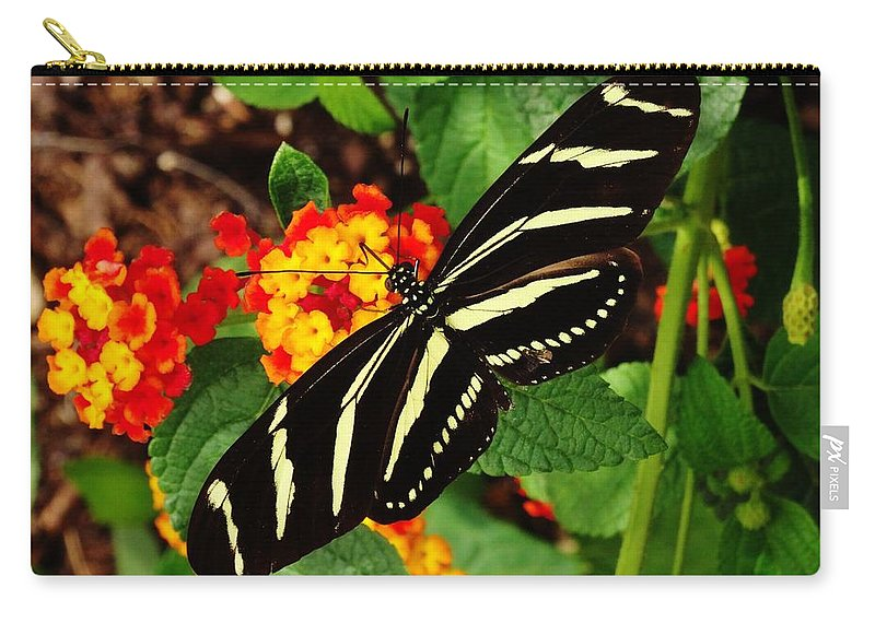 Black Carry-all Pouch featuring the photograph Black And Yellow Butterfly by Scenic Sights By Tara