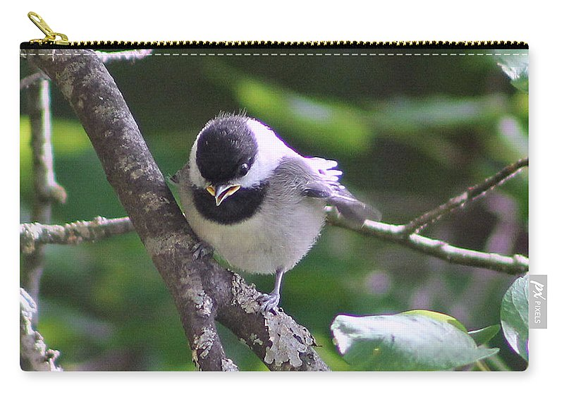 Black Carry-all Pouch featuring the photograph Black Capped Chickadee by Leone Lund
