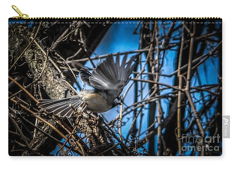 Chickadee Carry-all Pouch featuring the photograph Black Capped Chickadee Start Of Flight by Ronald Grogan