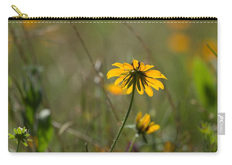 Black Eyed Susan Carry-all Pouch featuring the photograph Black-eyed Susan by Louise Heusinkveld