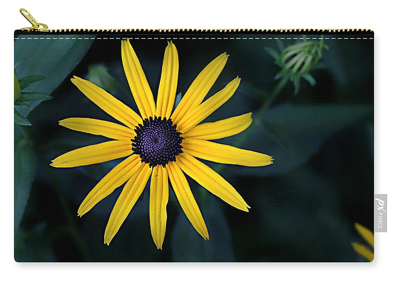 Asteraceae Carry-all Pouch featuring the photograph Black-eyed Susan by William Tanneberger