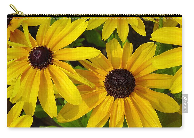 Black Eyed Susan Carry-all Pouch featuring the photograph Black Eyed Susans by Suzanne Gaff