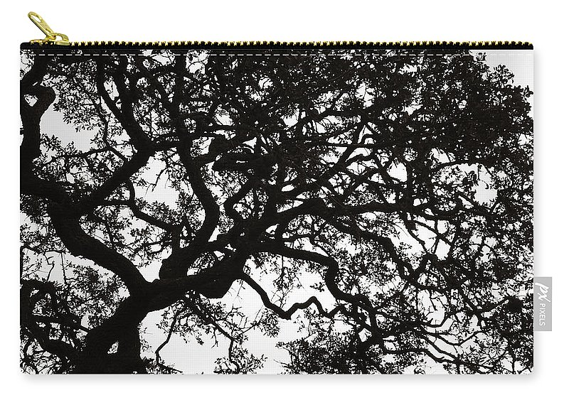 Black Carry-all Pouch featuring the photograph Black Jack Oak Tree by Marilyn Hunt