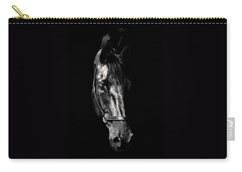 Horse Carry-all Pouch featuring the photograph Black Satin by Nadine Lewis
