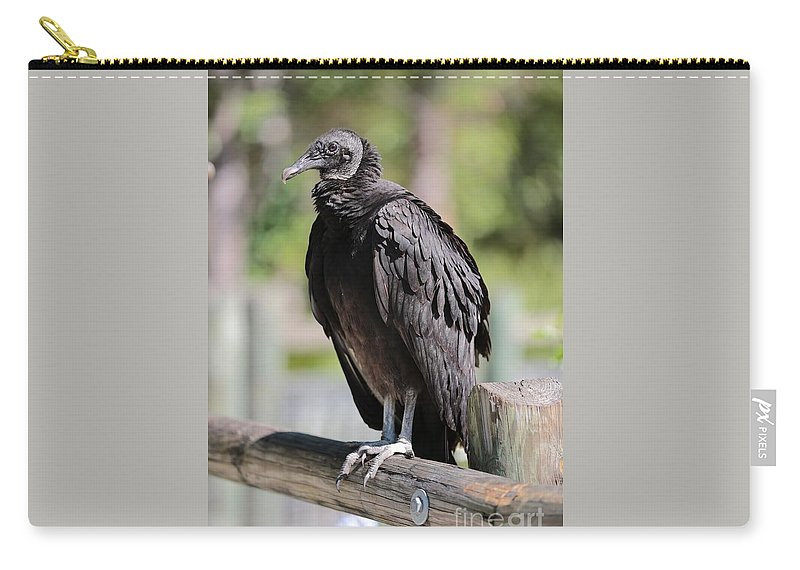 Black Vulture Carry-all Pouch featuring the photograph Black Vulture On The Boardwalk by Carol Groenen