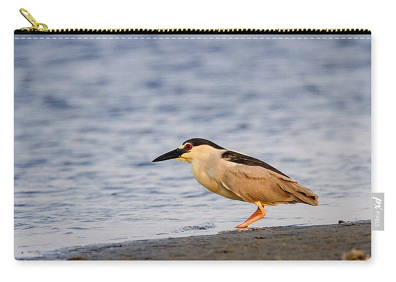 Doug Lloyd Carry-all Pouch featuring the photograph Blackcrowned Night Heron by Doug Lloyd