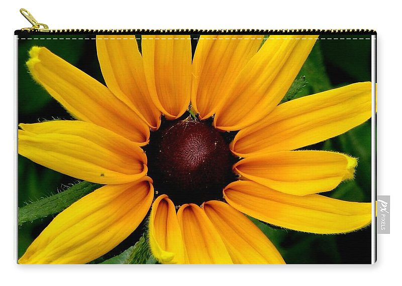 Black-eyed Susan Carry-all Pouch featuring the photograph Blackeyed Susan by Rose Santuci-Sofranko