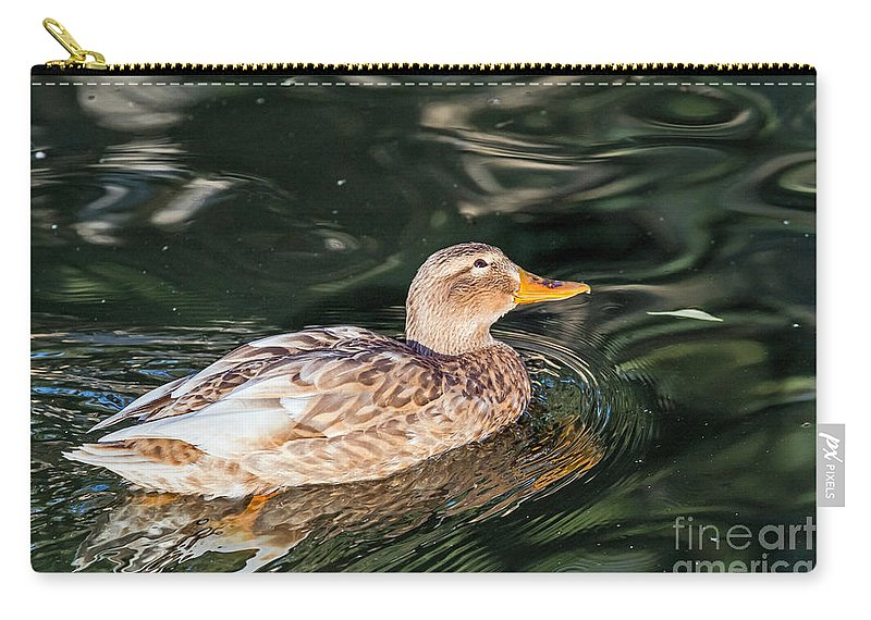 Anas Platyrhynchos Carry-all Pouch featuring the photograph Blondie by Kate Brown