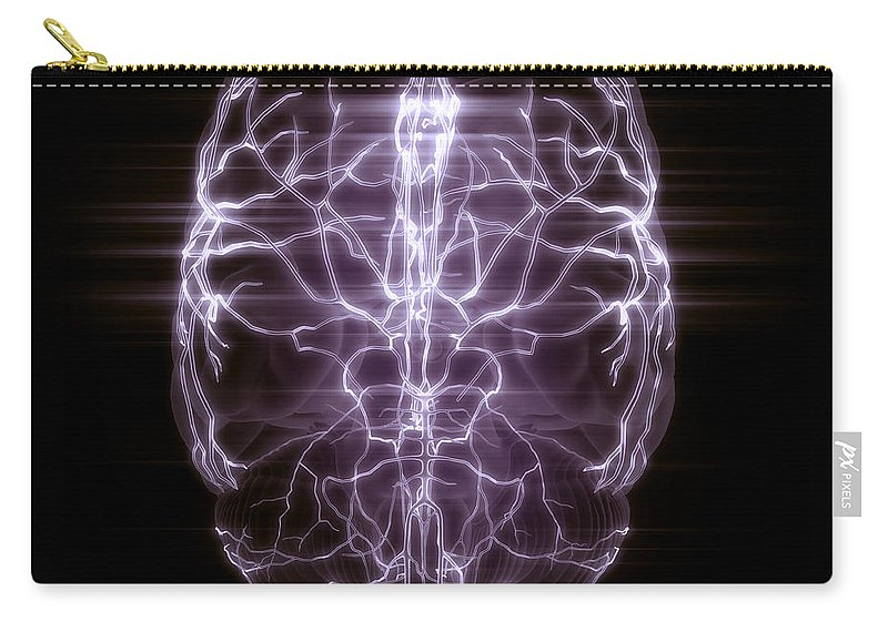 Anatomical Model Carry-all Pouch featuring the photograph Blood Supply To The Brain by Science Picture Co