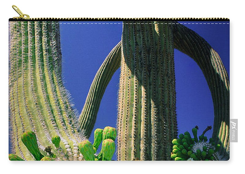 America Carry-all Pouch featuring the photograph Blooming Saguaro by Inge Johnsson