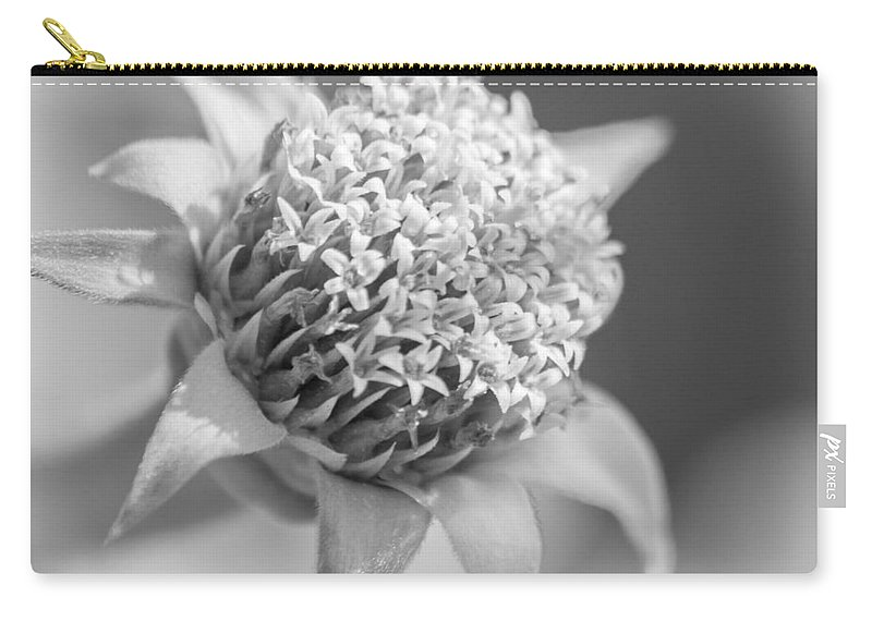 Weed Carry-all Pouch featuring the photograph Blooming Weed by Carolyn Marshall