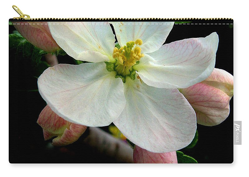 Flower Carry-all Pouch featuring the photograph Blossom by Jessica Jenney