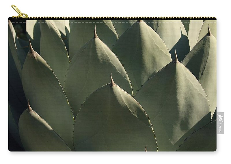 Blue Aloe Carry-all Pouch featuring the photograph Blue Aloe by Ellen Henneke