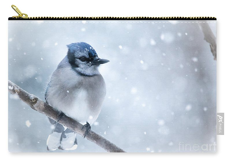 Carry-all Pouch featuring the photograph Blue And Snowy by Cheryl Baxter