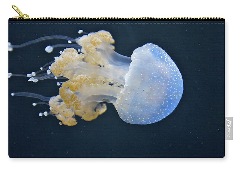 Underwater Carry-all Pouch featuring the photograph Blue And White Underwater Living Sea by Barry Winiker
