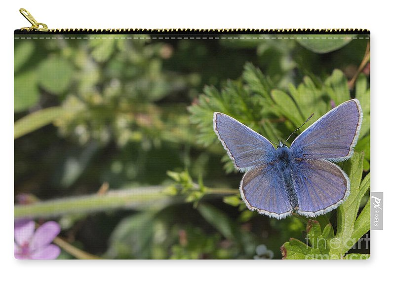 Bulgaria Carry-all Pouch featuring the photograph Blue Beauty by Jivko Nakev