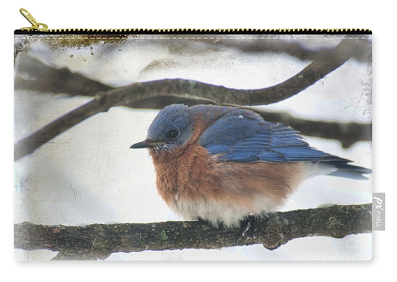 Blue Bird Carry-all Pouch featuring the photograph Blue Bird by David Arment
