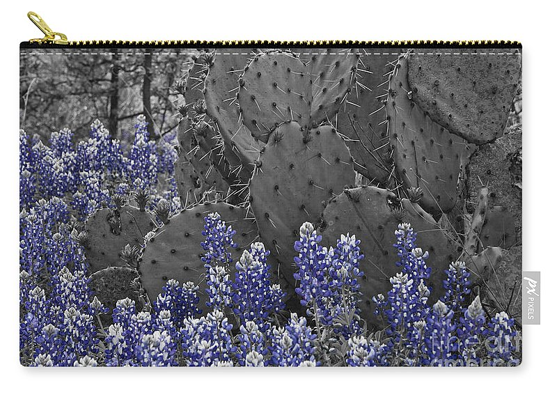 Wildflowers Carry-all Pouch featuring the photograph Blue Bonnet Cactus by Douglas Barnard