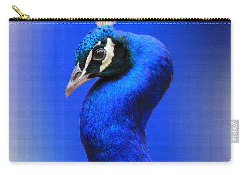 Peacock Carry-all Pouch featuring the digital art Blue Boy by Steve Herndon
