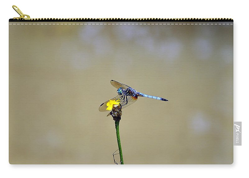 Dragonfly Carry-all Pouch featuring the photograph Blue Dasher Male by Al Powell Photography USA