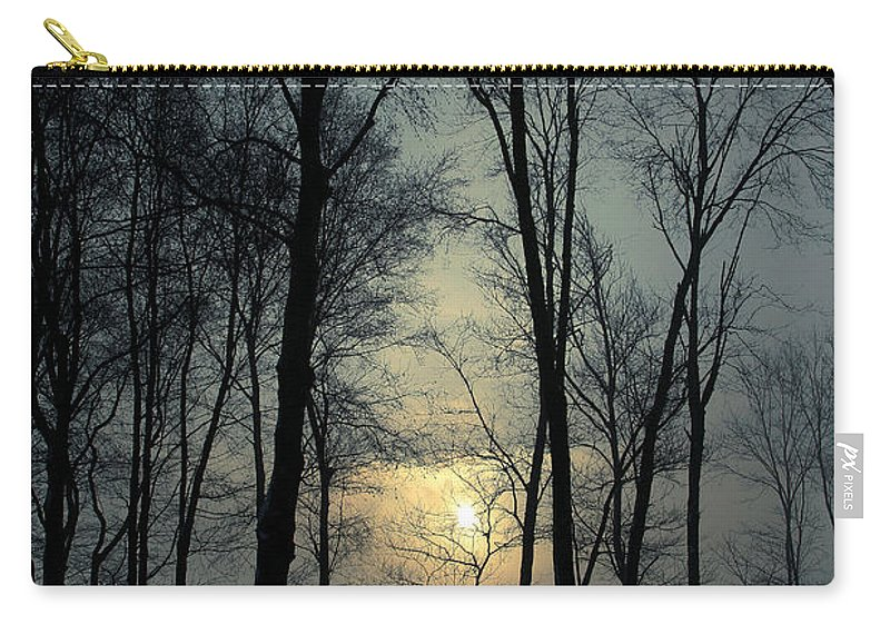 Winter Carry-all Pouch featuring the photograph Blue Daybreak by Karol Livote