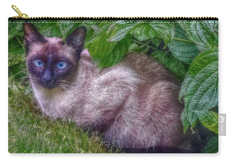 Cat Carry-all Pouch featuring the photograph Blue Eyes by Hanny Heim