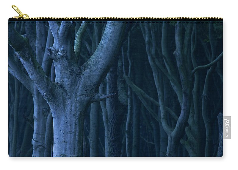 Nature Carry-all Pouch featuring the photograph Blue Forest by Heiko Koehrer-Wagner