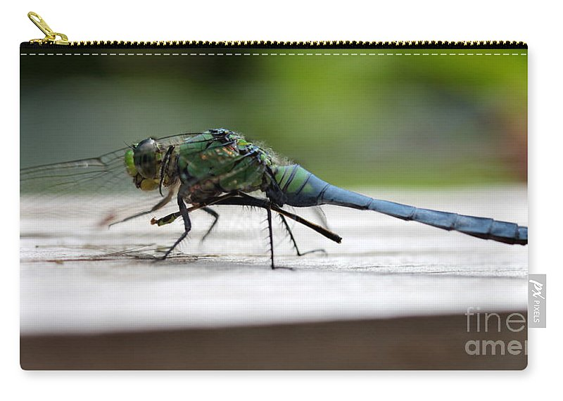 Dragonfly Carry-all Pouch featuring the photograph Blue Green Darter by Kenny Glotfelty