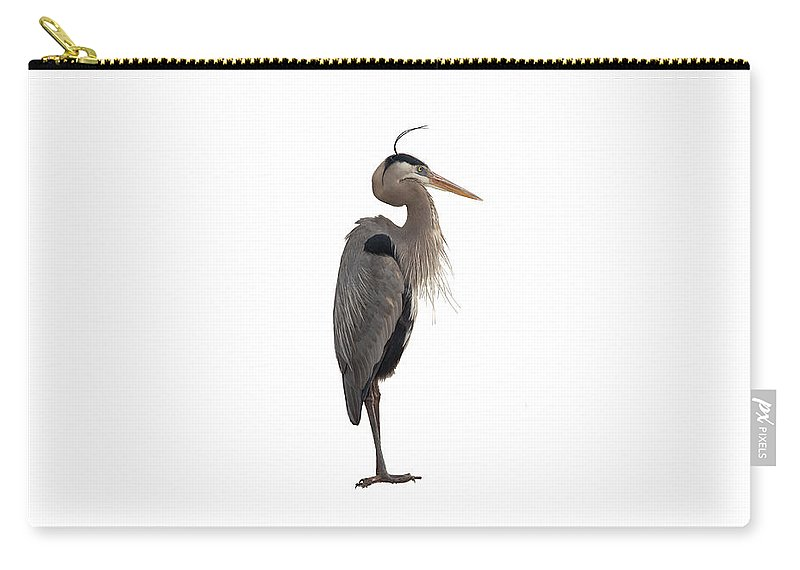 Ardea Herodias Carry-all Pouch featuring the photograph Blue Heron On White by John M Bailey