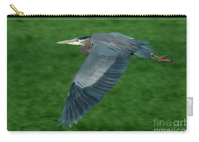 Birds Carry-all Pouch featuring the photograph Blue Heron by Rod Wiens