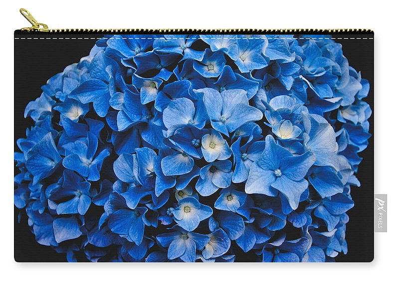 Blue Hydrangea Carry-all Pouch featuring the photograph Blue Hydrangea 1 by William Norton