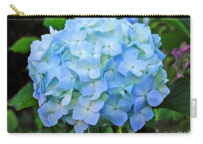 Flower Carry-all Pouch featuring the photograph Blue Hydrangea by Tap On Photo