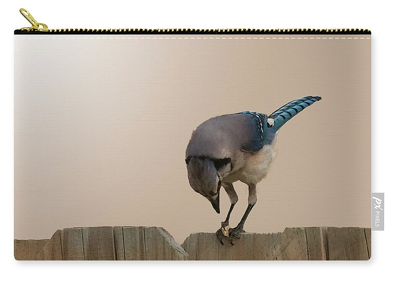 Blue Carry-all Pouch featuring the photograph Blue Jay Eating Corn by Photos By Cassandra