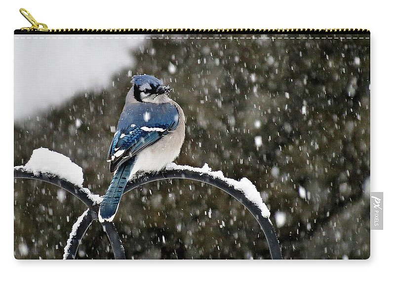Blue Carry-all Pouch featuring the photograph Blue Jay In Snow Storm by MTBobbins Photography