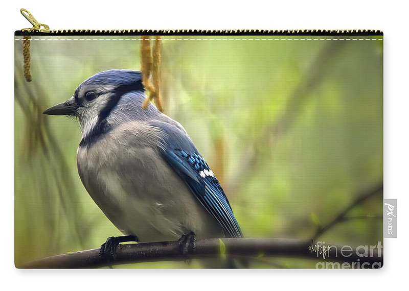 Bird Carry-all Pouch featuring the photograph Blue Jay On A Misty Spring Day by Lois Bryan