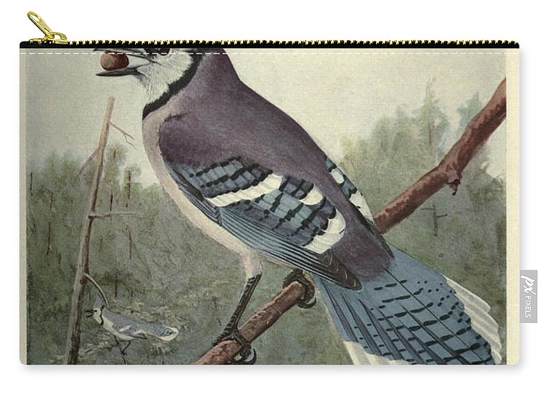 Blue Carry-all Pouch featuring the painting Blue Jay by Philip Ralley