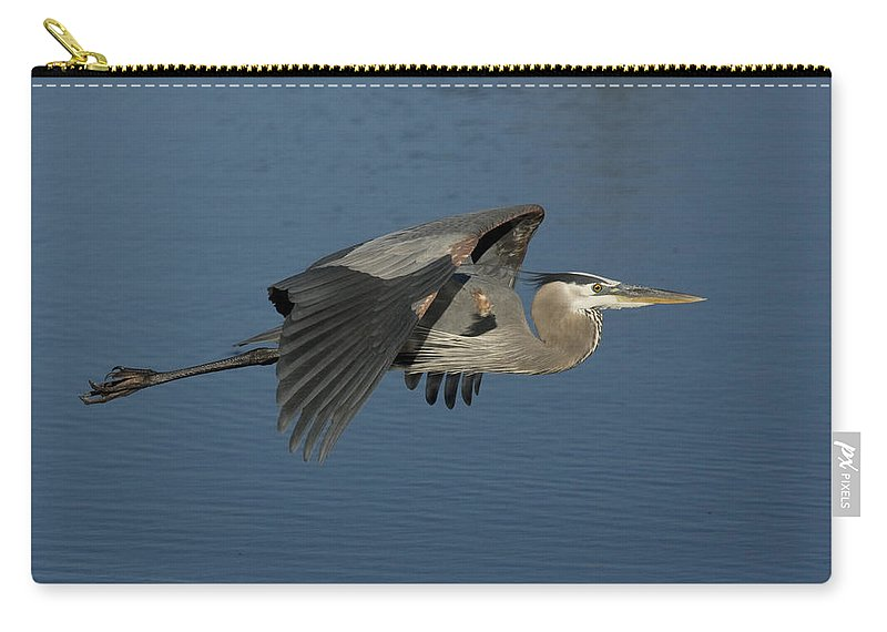 Blue Heron Carry-all Pouch featuring the photograph Blue Lou by Sandy Swanson
