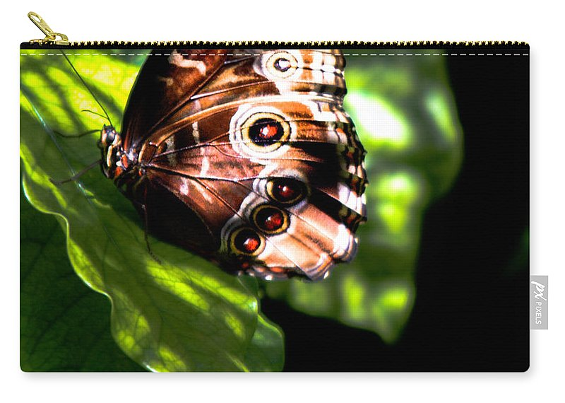 Optical Playground By Mp Ray Carry-all Pouch featuring the photograph Blue Morpho Butterfly by Optical Playground By MP Ray