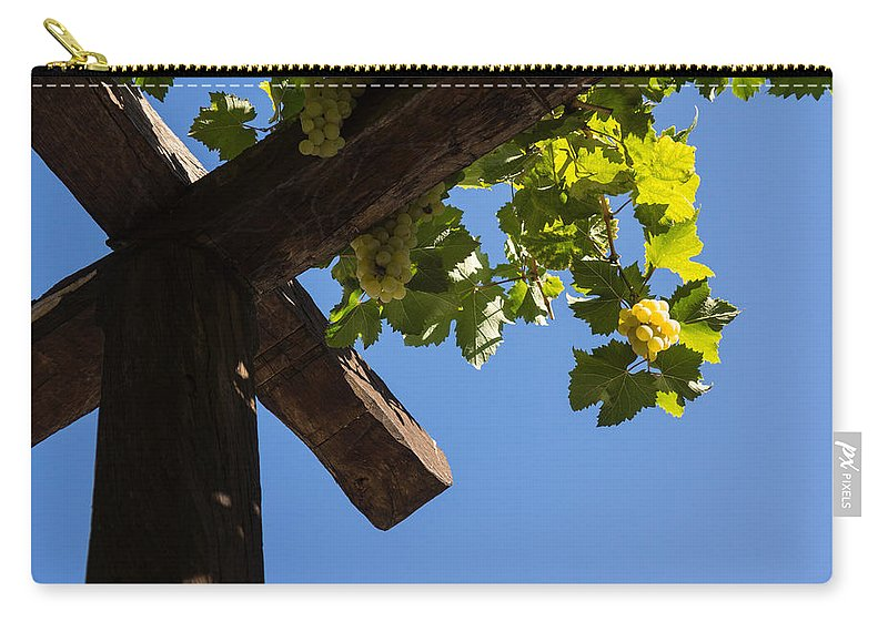 Harvest Carry-all Pouch featuring the photograph Blue Sky Grape Harvest - Thinking Of Fine Wine by Georgia Mizuleva