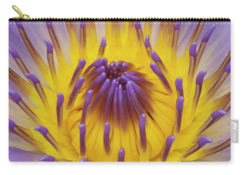 Water Lily Carry-all Pouch featuring the photograph Blue Water Lily by Heiko Koehrer-Wagner