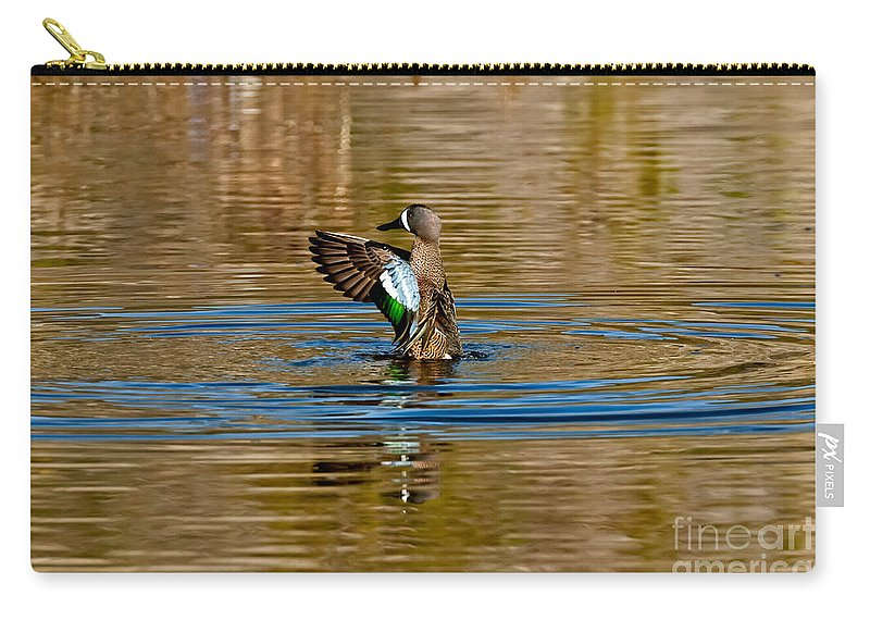 Fauna Carry-all Pouch featuring the photograph Blue-winged Teal Flapping by Anthony Mercieca