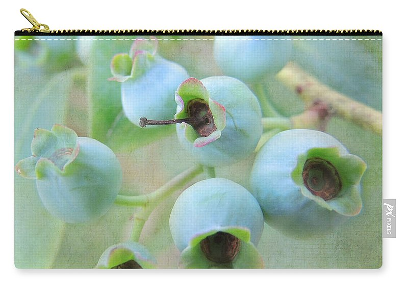 Blueberries Carry-all Pouch featuring the photograph Blueberries by Mim White