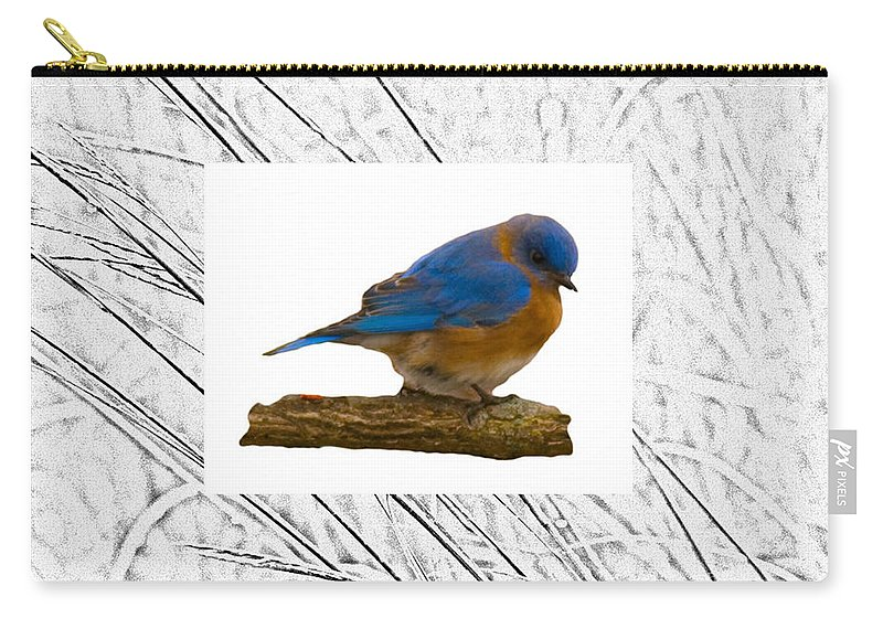 Blue Bird Carry-all Pouch featuring the photograph Bluebird In Prairie Frame by Crystal Heitzman Renskers