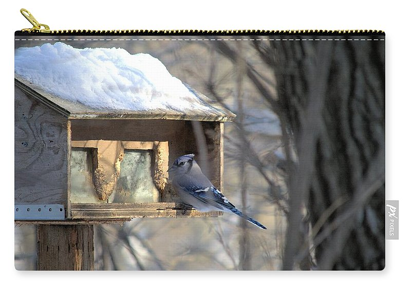 Bird Carry-all Pouch featuring the photograph Bluejay by Bonfire Photography