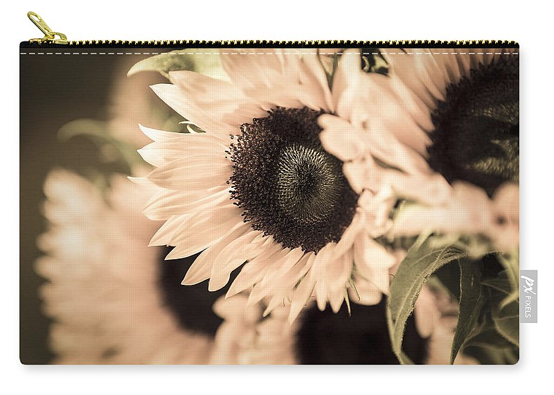 Sunflower Carry-all Pouch featuring the photograph Blush by Caitlyn Grasso