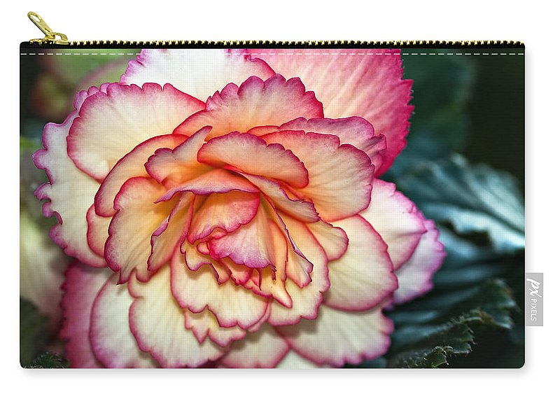 Begonia Carry-all Pouch featuring the photograph Blushing by Steve Harrington