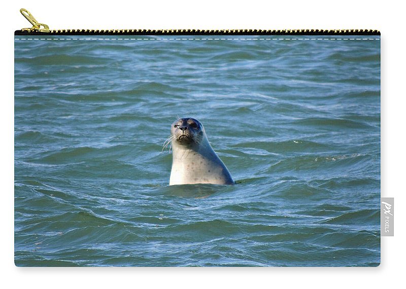 Seal Carry-all Pouch featuring the photograph Bobbing In The Water by Kimberly Perry